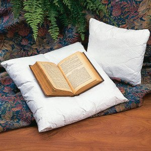 book_pillow